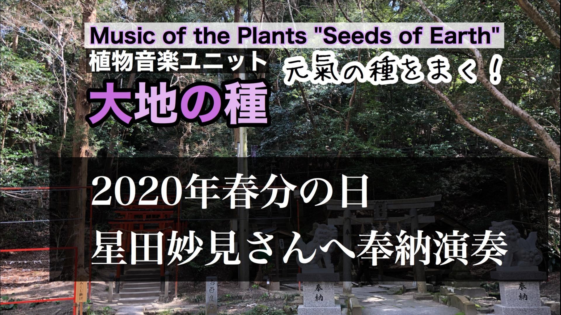2020年春分の日、星田妙見さんへ奉納演奏 ファンクラブ限定公開