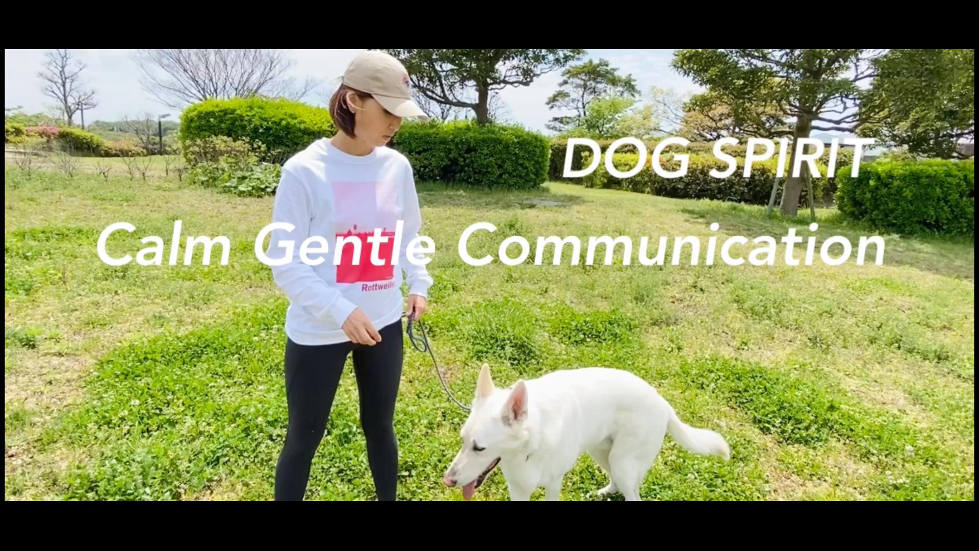 Calm Gentle Communication