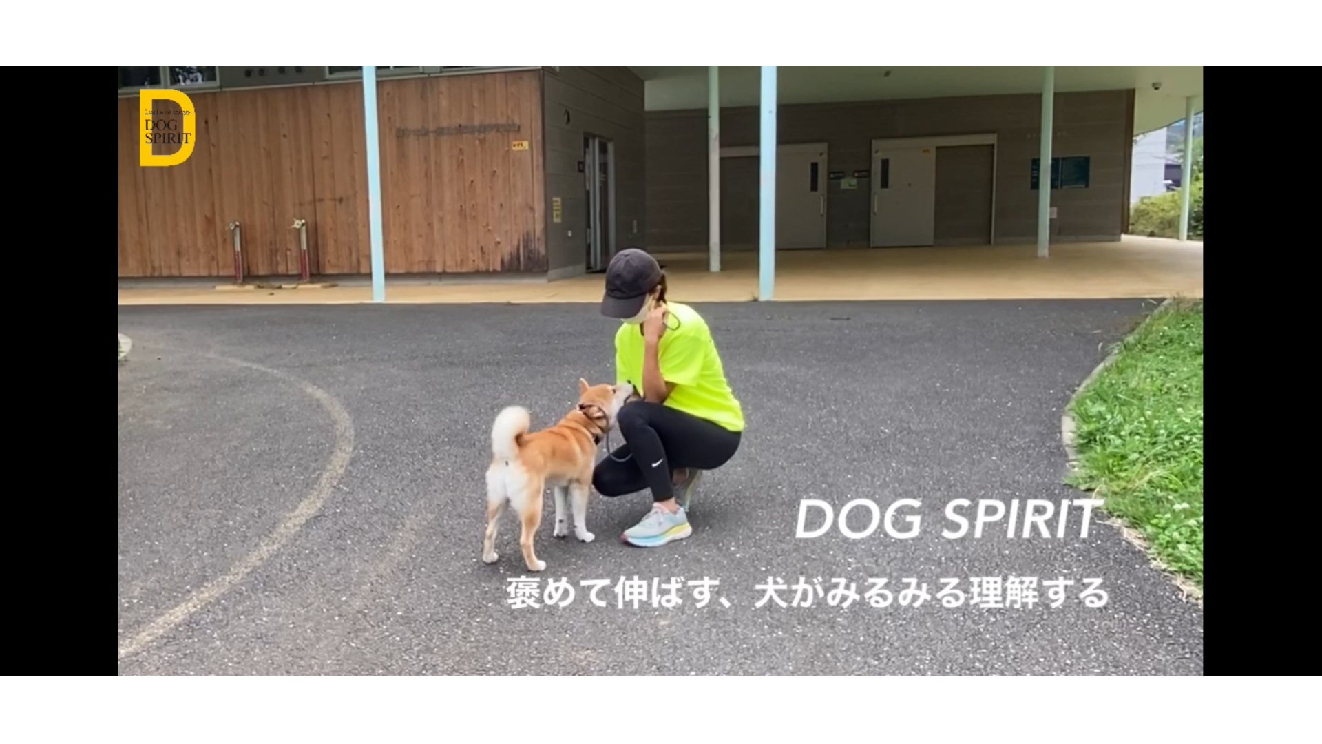 褒めて伸ばす、犬がみるみる理解する