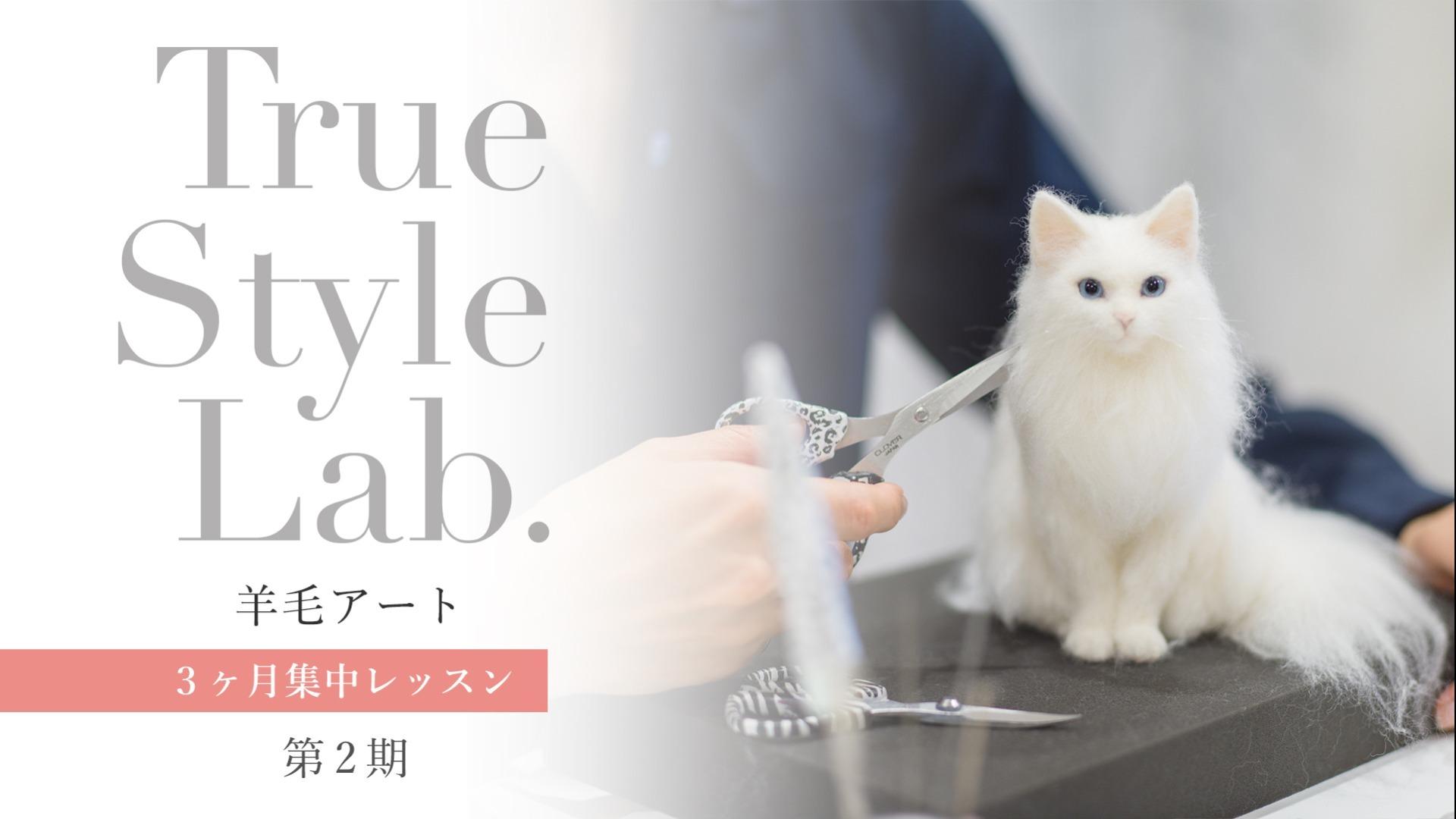 【第二期】 TrueStyleLab. 羊毛アート3ヶ月集中レッスン