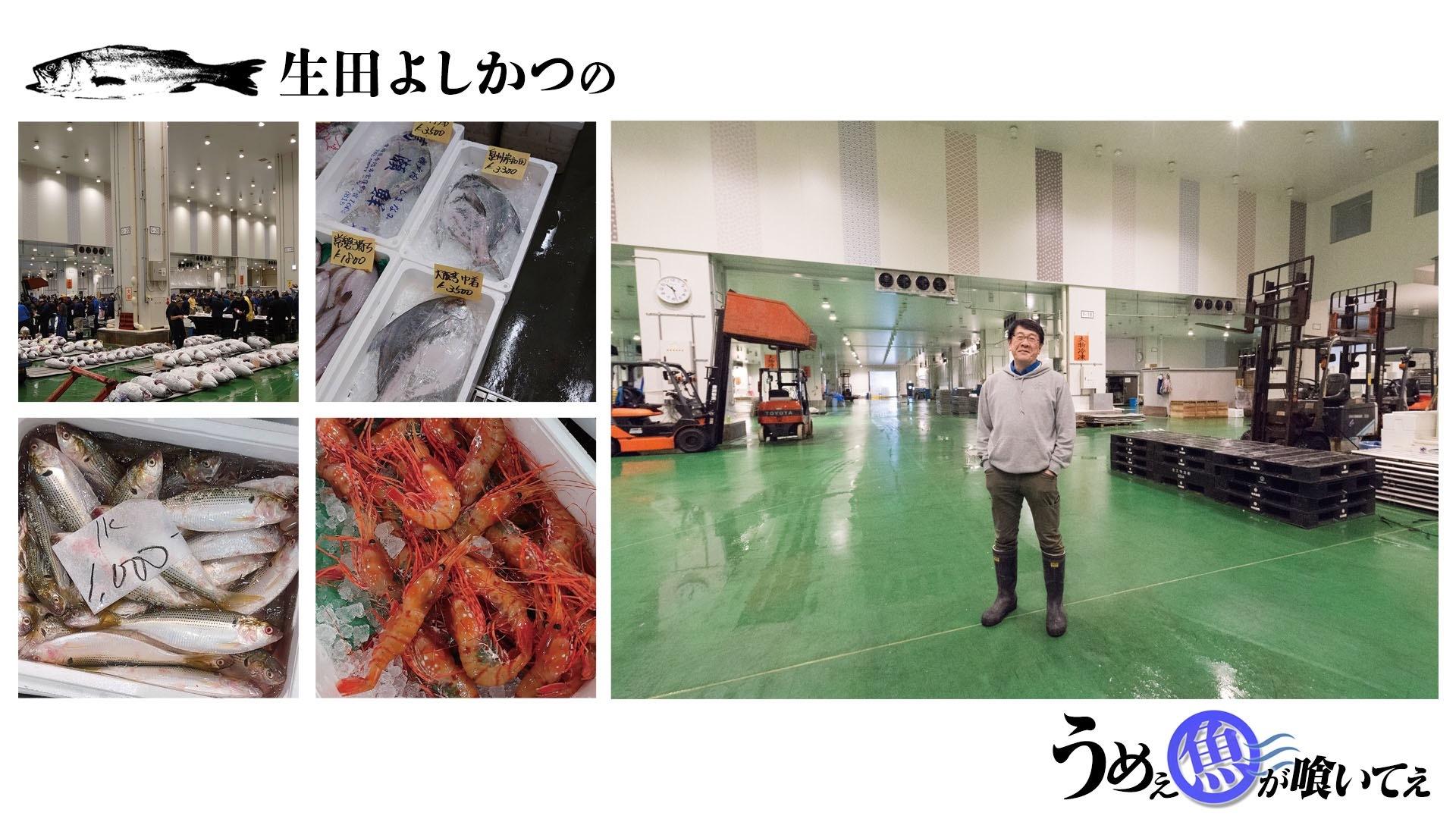 生田よしかつという魚河岸のおっさん