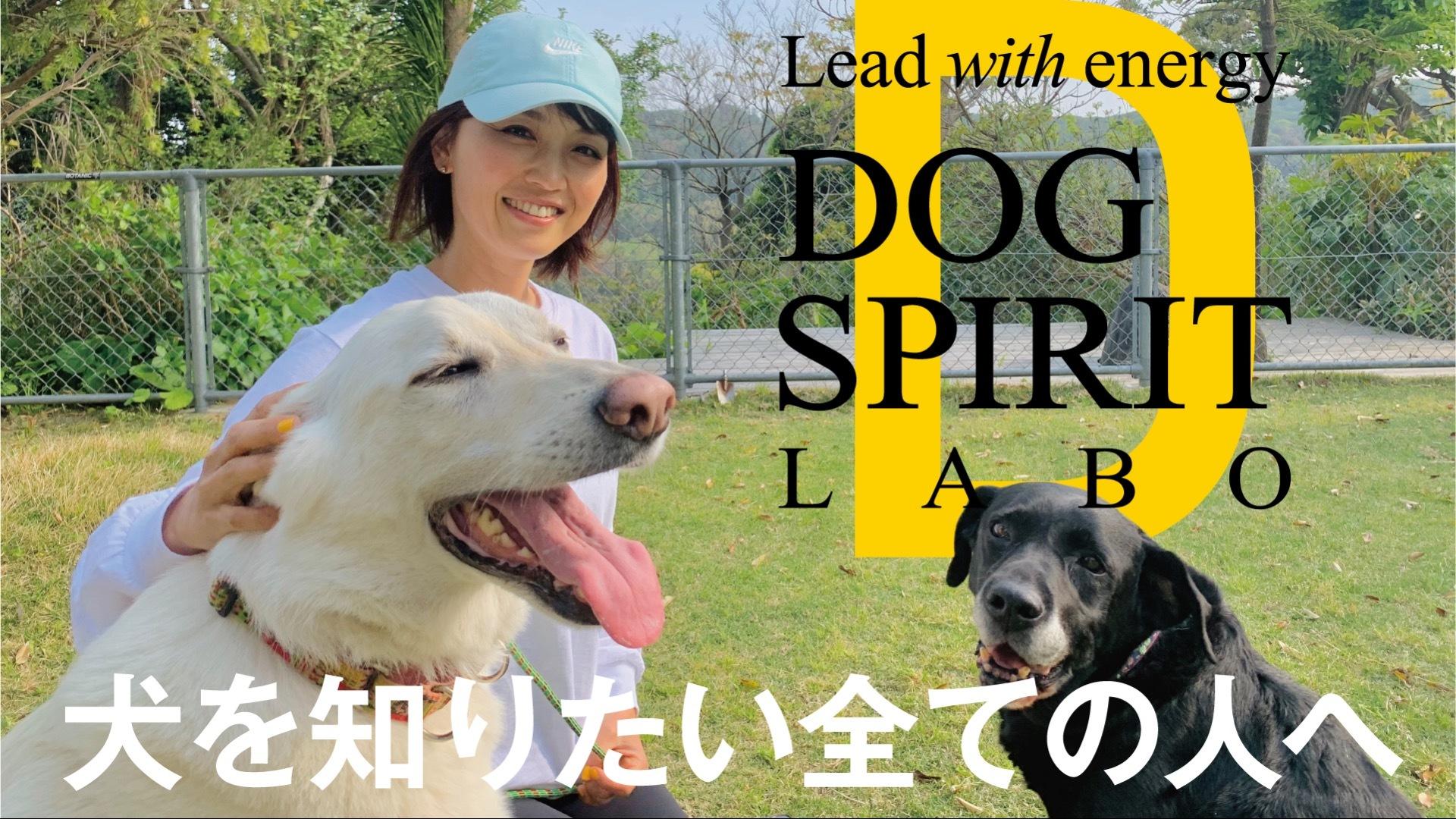 DOG SPIRIT LABO
