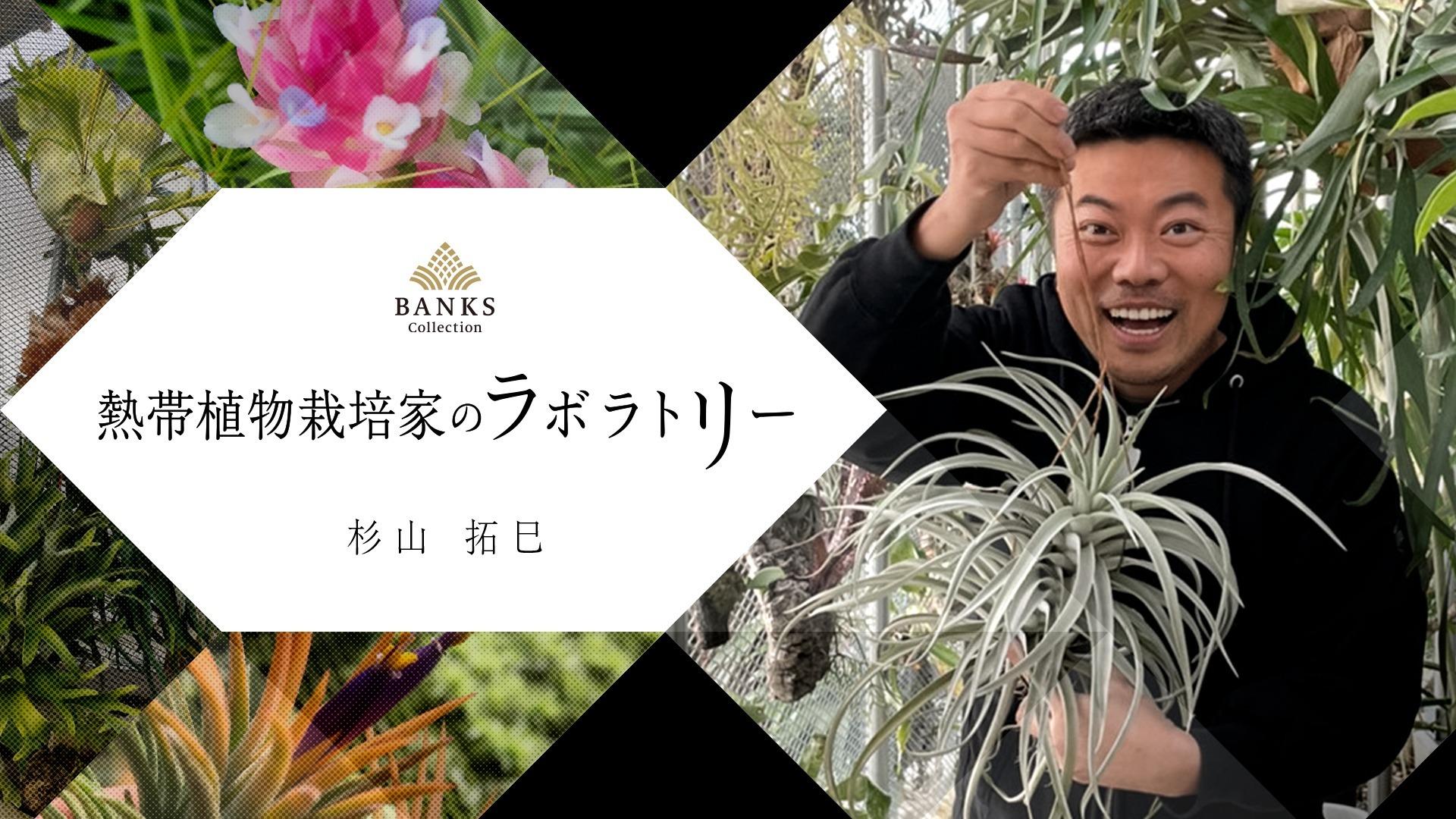 熱帯植物栽培家のラボラトリー