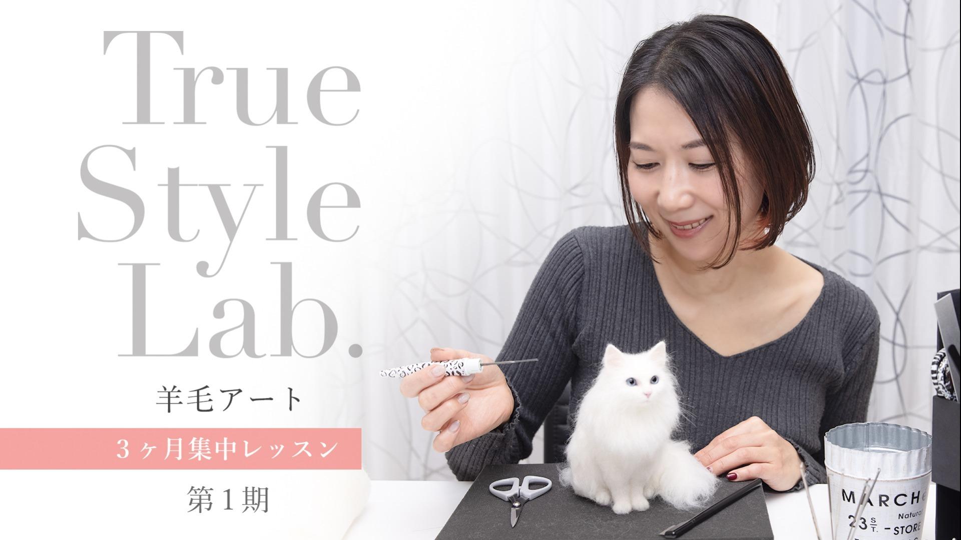 【第一期】TrueStyleLab. 羊毛アート3ヶ月集中レッスン