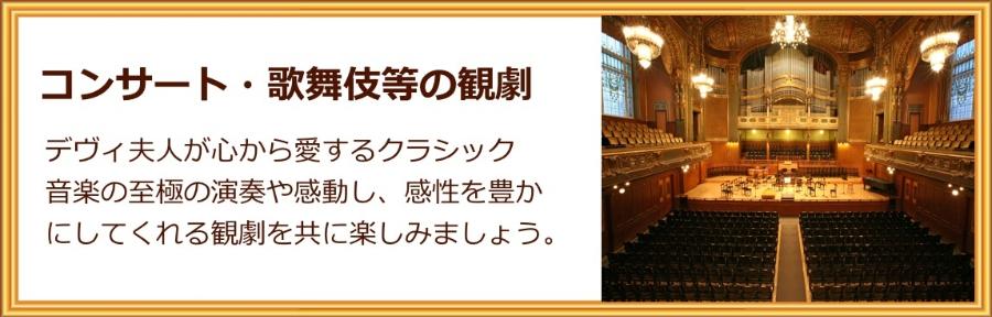 コンサート・歌舞伎等の観劇