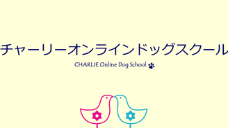 ☆365日しつけのヒント☆チャーリーオンラインドッグスクール