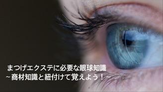 まつげエクステい必要な眼球知識