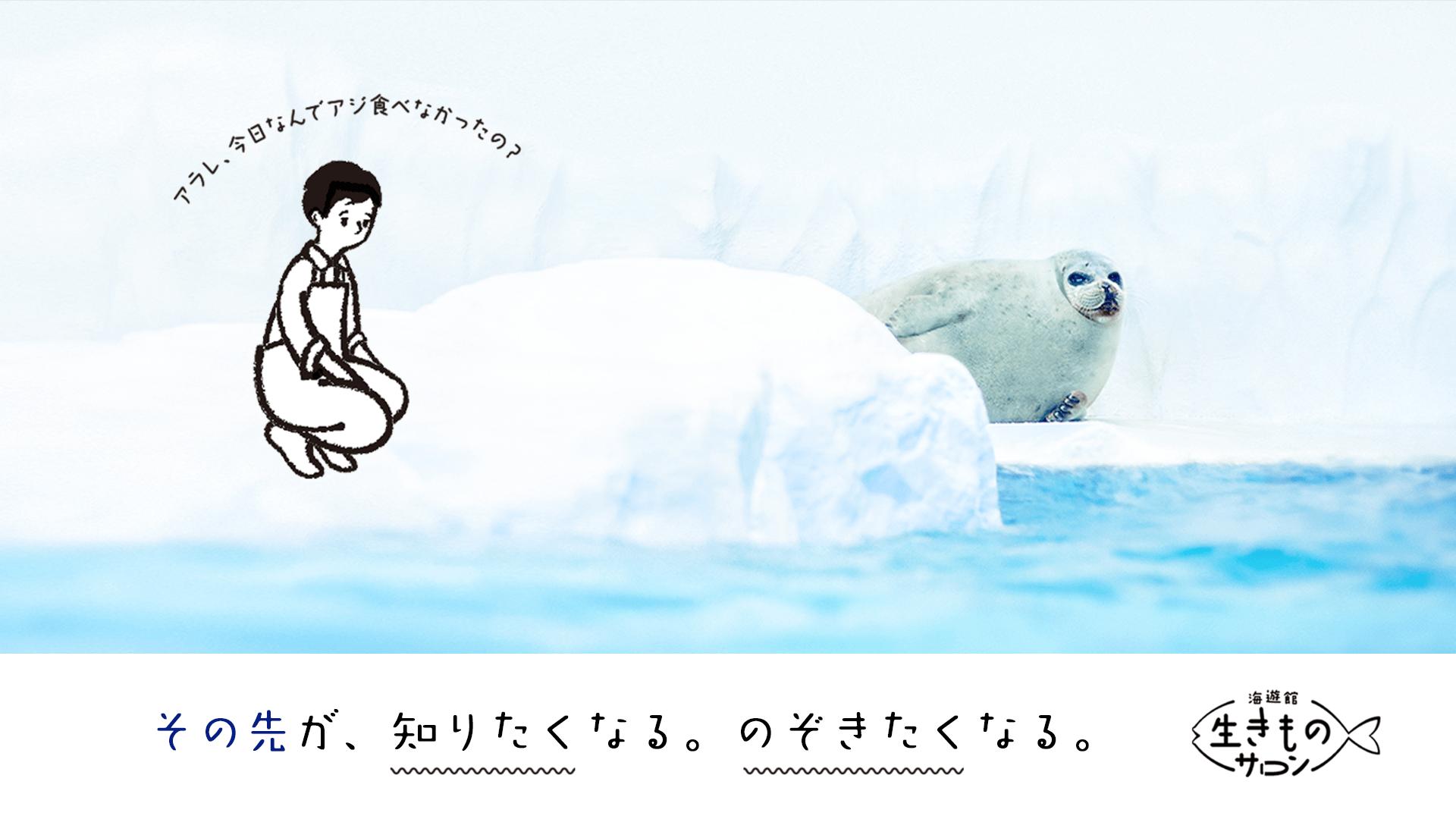 海遊館の飼育員 - 海遊館 生きものサロン - DMM オンラインサロン