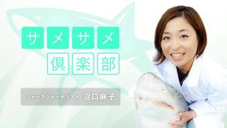 シャークジャーナリスト沼口麻子の「サメサメ倶楽部」 沼口麻子(ぬまぐち あさこ)
