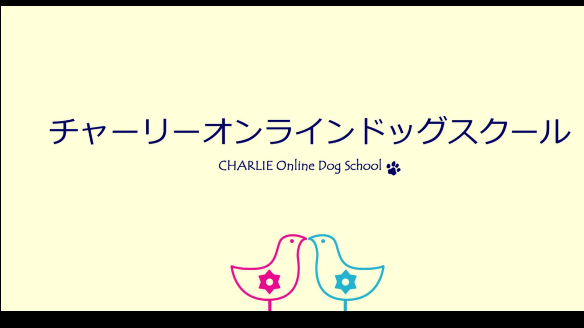夏目真利子 - チャーリーオンラインドッグスクール - DMM オンラインサロン